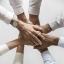 Au bout du fil : Un réseau de collaborateurs compétents